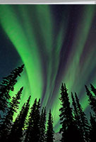 Northern lights, aurora borealis, thank you card