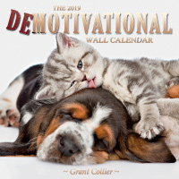 The 2019 Demotivational Wall Calendar
